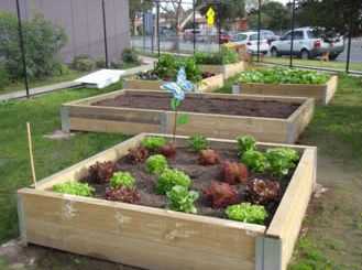 Sustainable Garden Project